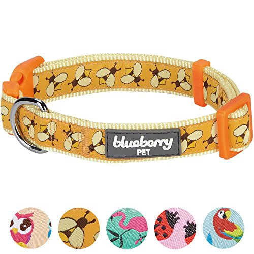 Blueberry Pet Essentials 8 Patterns Statement Busy Bees Designer Adjustable Dog Collar, Medium, Neck 14.5