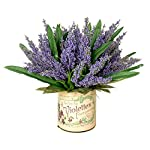 Creative-Displays-Lavender-Heather-Arragement-Accented-with-Lemon-Leaves-in-A-French-Label-Container-One-Size-LavenderPurple