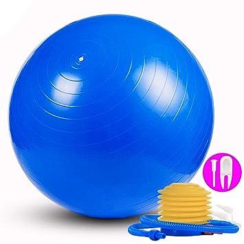 DAMIGRAM Pelota de Ejercici, 65cm Anit Burst Profesional Diseño de Calidad Pelota Gimnasia Resistente, para Yoga, Equilibrio, Fitness, Entrenamiento, ...