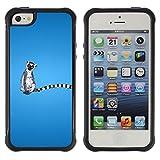 King Case@ Long Tail Grey White Animal Ring Tailed Lemur Rainforest Rugged hybrid Protection Impact Case Cover For iphone 5S CASE Cover ,iphone 5 5S case,iphone5S plus cover ,Cases for iphone 5 5S