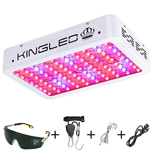 Cheap King Plus 1000w LED Grow Light Double Chips Full Spectrum with UV&IR for Greenhouse Indoor Plant Veg and Flower