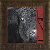 Hide and Seek By Todd Thunstedt 17.5x17.5 Farm All Farming John Deere IH Farmall Allis Ford New Combine Pig Sheep Lamb Holstein Dairy Hereford Black Beef Angus Verse Framed Art Print Wall Décor Picture