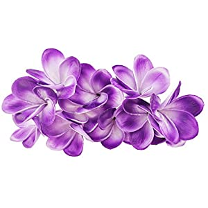 Winterworm Bunch of 10 PU Real Touch Lifelike Artificial Plumeria Frangipani Flower Bouquets Wedding Home Party Decoration (Purple+White)
