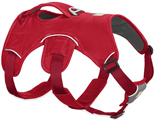Aspen Comfort Chain Collar (RUFFWEAR NEW 2017 RED WEB MASTER DOG HARNESS ♦ SECURE REFLECTIVE SUPPORTIVE MULTI USE ♦ ALL SIZES (Large / XL))