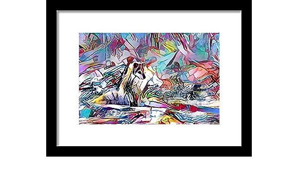 Amazon com: Nature Animal Furry: NEXT Art: Fine Art