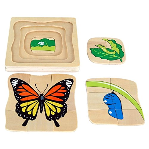 Montessori Butterfly Life-Cycle Puzzle