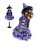 Dog Costume Purple Led Witch Costumes Dogs As Led Light Witches