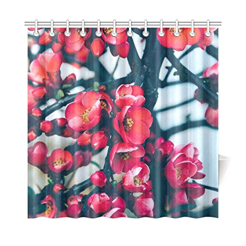 QYUESHANG Home Decor Bath Curtain Tree Flowers Red Spring Nature Summer Leaf Polyester Fabric Waterproof Shower Curtain For Bathroom, 72 X 72 Inch Shower Curtains Hooks (Willow Teal Stripe)