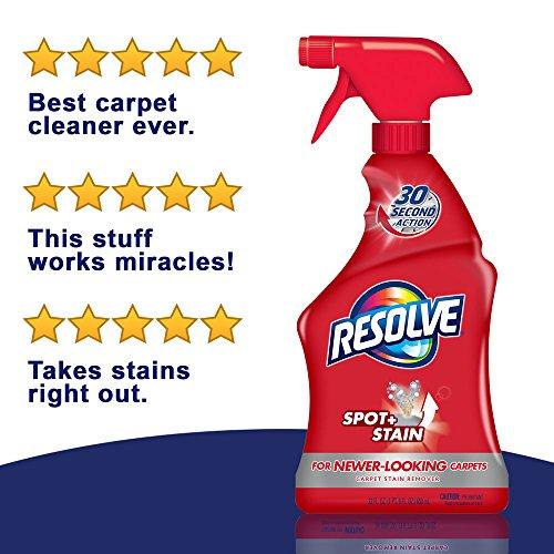 Resolve Carpet Spot & Stain Remover, 22 fl oz Bottle, Carpet Cleaner - 6
