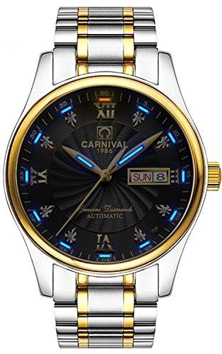 TEINTOP Men's Luminous Wrist Watches Automatic Mechanical with Black Face