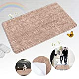 Indoor Doormat Front Door Mat Non Slip Rubber Back Door Mats Magic Inside Dirt Trapper Entry Rugs Entrance Door Rug Machine Washable Door Carpet Mat for Entryway - Brown, 20