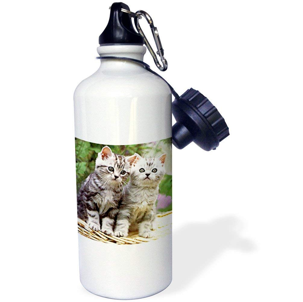 qidushop Zwei Kätzchen Yoga-Wasserflasche, isolierend, Edelstahl, mit Aufschrift Daughter, 53 ml