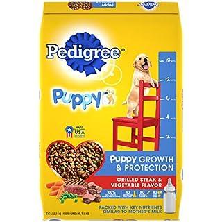 PEDIGREE Puppy Growth & Protection Dry Dog Food Grilled Steak & Vegetable Flavor, 16.3 lb. Bag