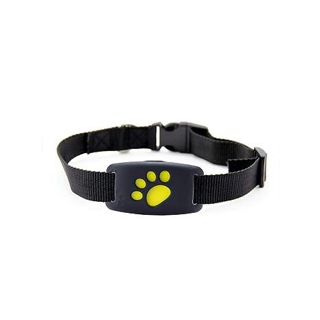 GPS para Mascotas Rastreador Anti perdió Localización ...