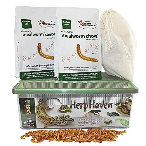 Mealworm Breeder Kit - Breed Live Feeder Worms for Hedgehogs, Sugar Gliders, Reptiles, Wild Birds, Chickens, Lizards, Bearded Dragon, Skunks, Opossum, Fish, Turtles, Tortoises, Geckos, Frogs, Ducks