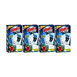 Windex Outdoor All In One Glass Cleaning Tool, 1 kt - Pack of 4