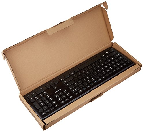 Best AmazonBasics Ultra Slim Wired Compatible Keyboard For Laptop Online India