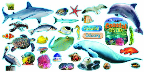(Coastal Sea Life Mini Bulletin Board Set)