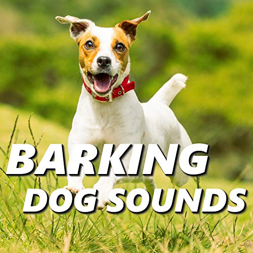 Barking Dog Sounds