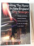 img - for Igniting the Flame in New England: book / textbook / text book