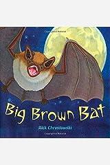 Big Brown Bat Paperback