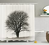 Modern Kitchen Curtain Ideas Farm House Decor Shower Curtain Set By Ambesonne, Photo Of A Big Tree On A Field Branches Fall Season Monochromic Landscape Artwork, Bathroom Accessories, 69W X 70L Inches, Beige Black