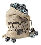 Color-Changing Fireplace Color Cones – 1 lb. Refill Bag