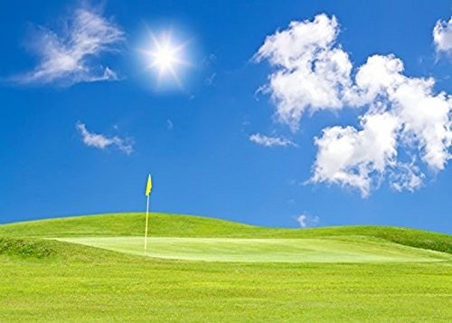 golf course Photography Backgrounds High-grade portrait cloth Computer printed party photo backdrop DD-yz201701