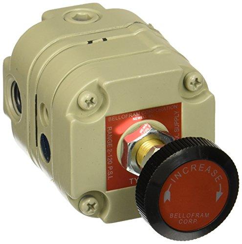 Bellofram 960-015-000 Pressure Regulator, 1/4'' NPT(F), 2-120 psi by Marsh Bellofram