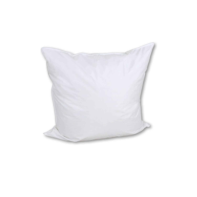 Betten-Anne Kopfkissen dünn mit Biese 60% Daunen 40% Federn (weiße Deutsche) 80x80 300 g