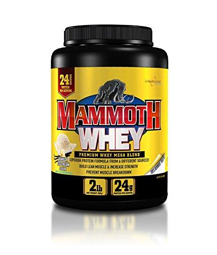Mammoth Supplements 100% Whey Protein Powder, Vanilla 2lb