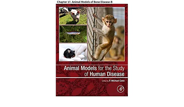 Animal models for the study of human disease chapter 17 animal animal models of bone disease b kindle edition by meghan e mcgee lawrence frank j secreto farhan a syed professional technical kindle ebooks fandeluxe Images