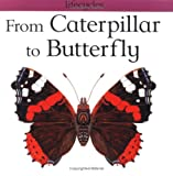 From Caterpillar to Butterfly, Gerald Legg and Carolyn Scrace, 0531153320