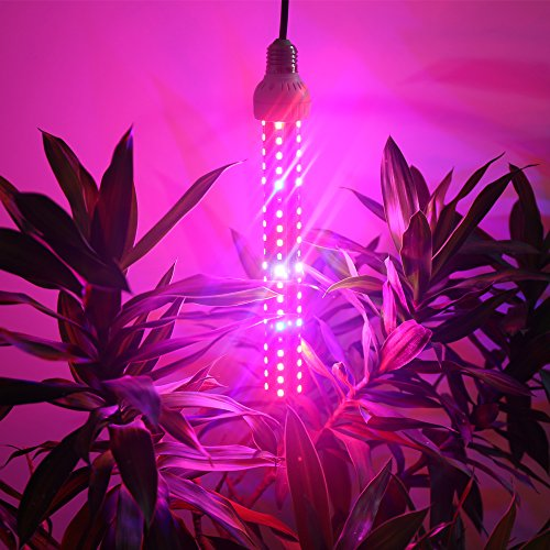 Derlights 150W Full Specreum Led Plant Grow Light Bar with UV & IR, 360 degree lighting, 200pcs SMD5730, AC 85~265V, for Indoor Gardening Hydroponics System Greenhouse Flowering Plant Lighting (150W)