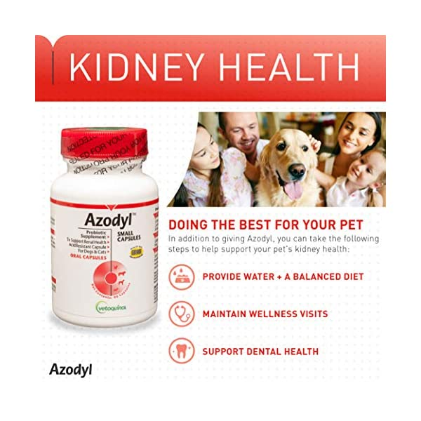 Vetoquinol Azodyl Kidney Health Supplement for Dogs & Cats, 90ct - Probiotic Pet Well-being - Help Support Kidney Function & Manage Renal Toxins - Renal Care Supplement - Easy-to-Swallow Small Caps 5