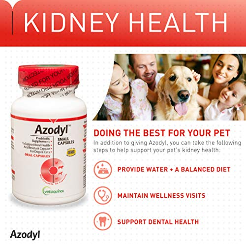 Vetoquinol Azodyl Kidney Health Supplement for Dogs & Cats, 90ct - Probiotic Pet Well-being - Help Support Kidney Function & Manage Renal Toxins - Renal Care Supplement - Easy-to-Swallow Small Caps by Vetoquinol (Image #4)