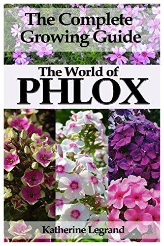 The World of Phlox