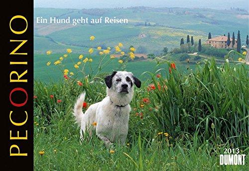 Pecorino - Ein Hund geht auf Reisen 2013. Broschürenkalender