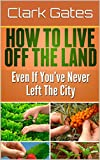How to Live Off the Land Even if You've Never Left the City