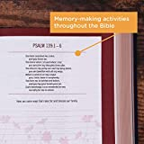 NIV, Our Family Story Bible, Leathersoft over