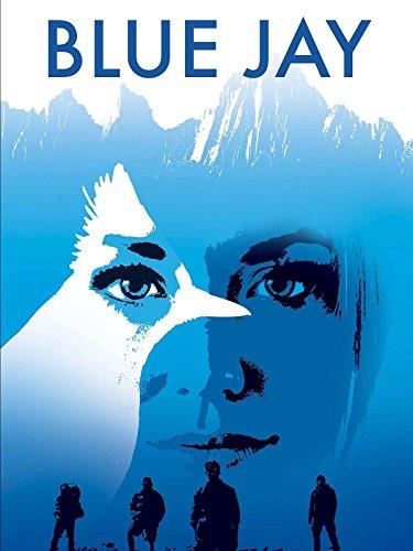 Blue Jay (Best Budget Camper Trailer)