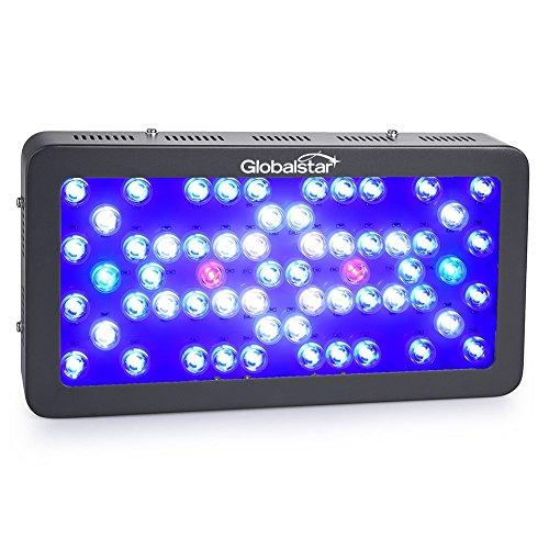 Global Star 60x5W Reef Aquarium LED Lights, Dimmable 300W