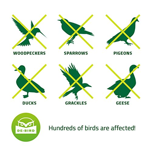 Balloon bird repellent 3 pk fast and effective solution to pest problems scary eyes for Duck repellent for swimming pools