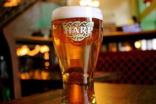Harp Lager Celtic Logo Design Beer Pub Glass ()