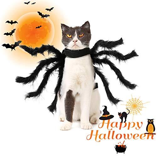 LOCOLO Halloween Spider Pet Costume Black Pet