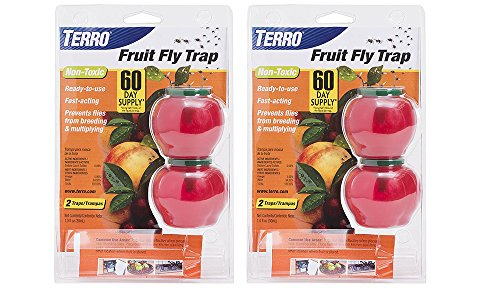 TERRO Fruit CmZIJ Fly Trap, 2 Count (2 Pack)