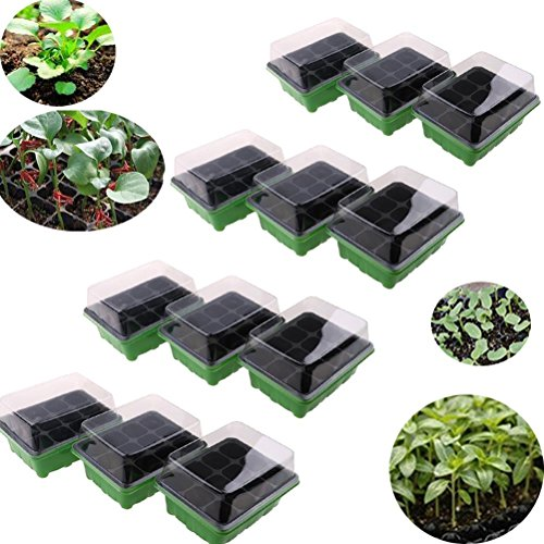 WWahuayuan Seedling Starter Trays Seed Starter Peat Pots Plant Flower Grow Starting Germination Kit Seeds Grow Box Case with Humidity Dome and Base,144 Cells,12 Trays,12-Cell Per Tray by by WWahuayuan