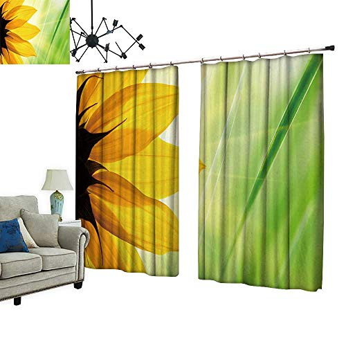 (PRUNUS Fashion Window Curtain with Hook Sunflower Flower Over Over Green Floral Background Radiation Protection,W96.5 xL96.5)