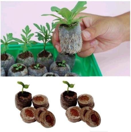 RROVE 10 Stück 10 Stück 30mm Jiffy Peat Pellets Seed Startstopfen Palettensämling Bodenblock ORP 30mm