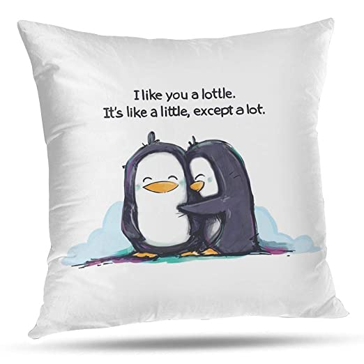 RCXrBFE Funda de Almohada, 50 x 50 cm I Like You A Lottle ...